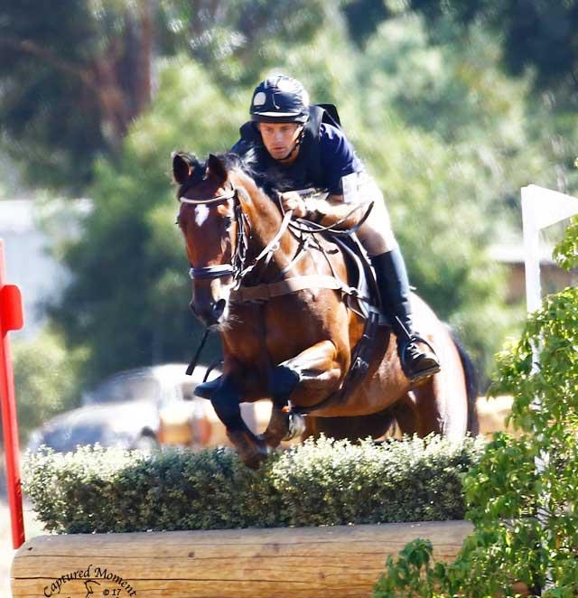 Man on horse show jumping | Kelcie's Treats